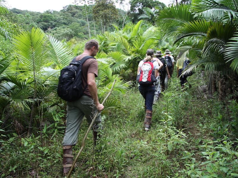 Wanderung durch Atlantischen Regenwald in Santa Catarina